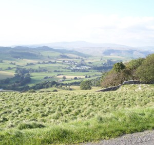 Hay Meadows above Langcliffe